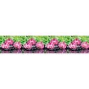 """Интерьерная панель """"Орхидеи Эпифиты"""" из ПВХ пластика; L-3 м."""